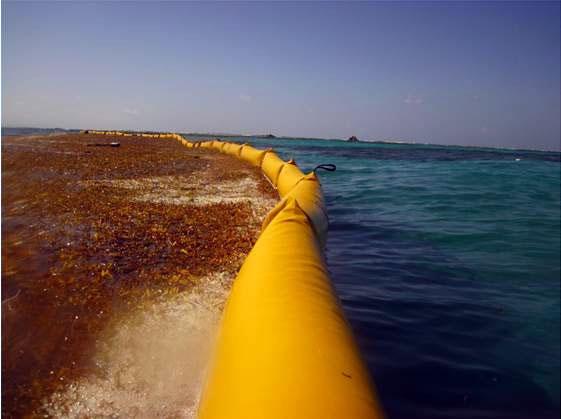 barrage-anti-algues-goeland-4